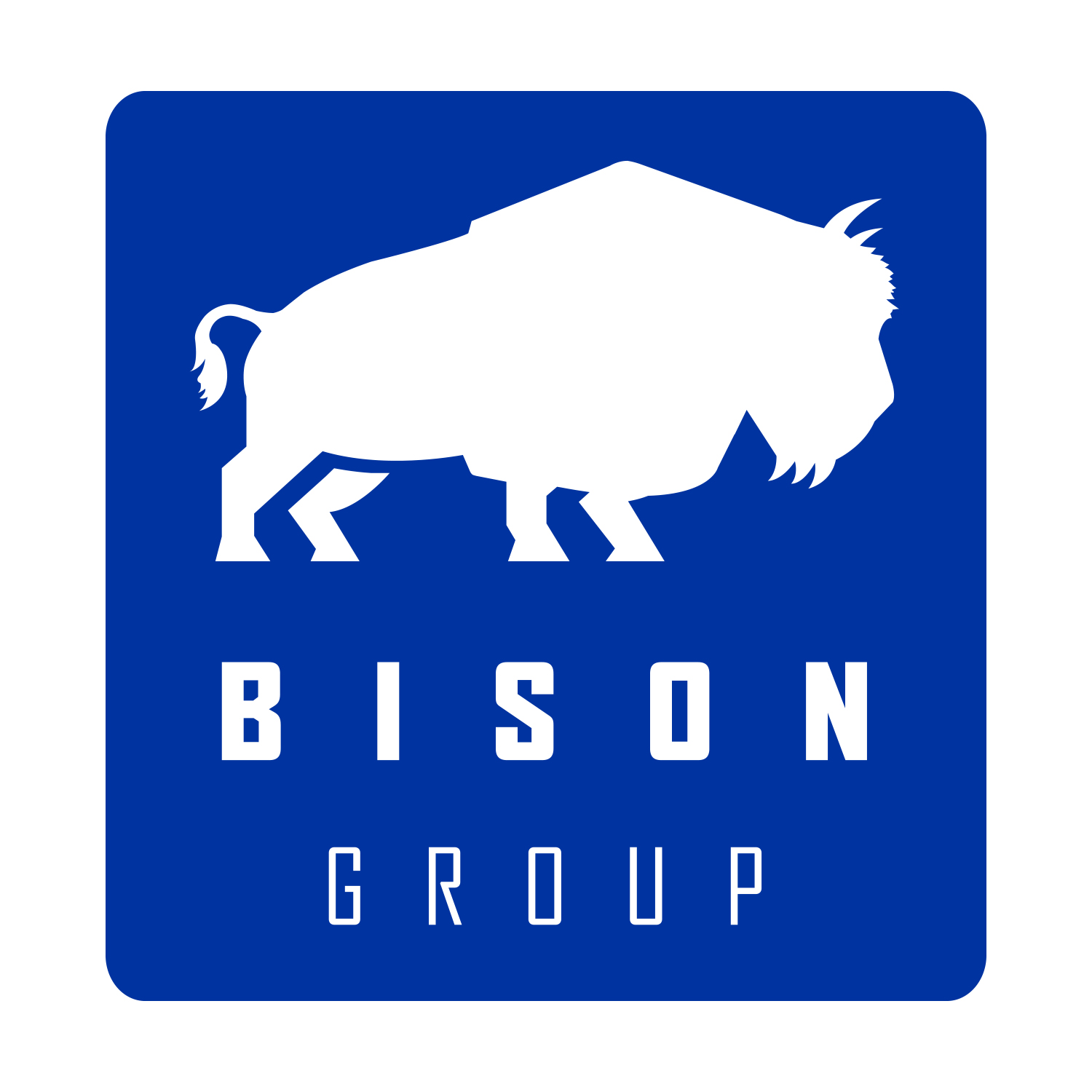 The Bison Group